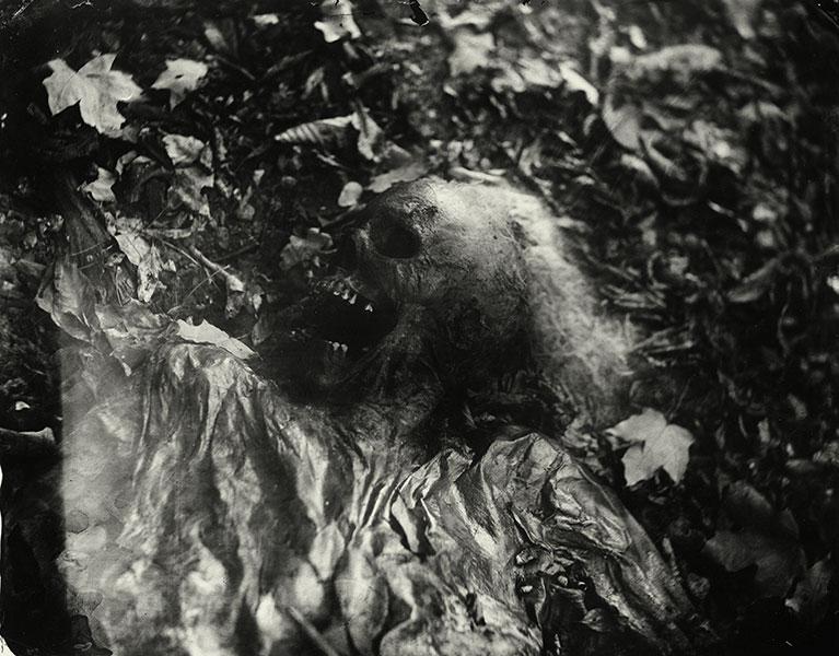 Foto: Sally Mann. Tomada de la colección 'Body Farm'. (sallymann.com).