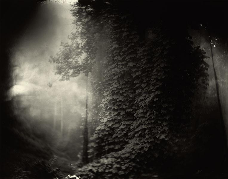 Foto: Sally Mann. Southern Landscapes. (sallymann.com).