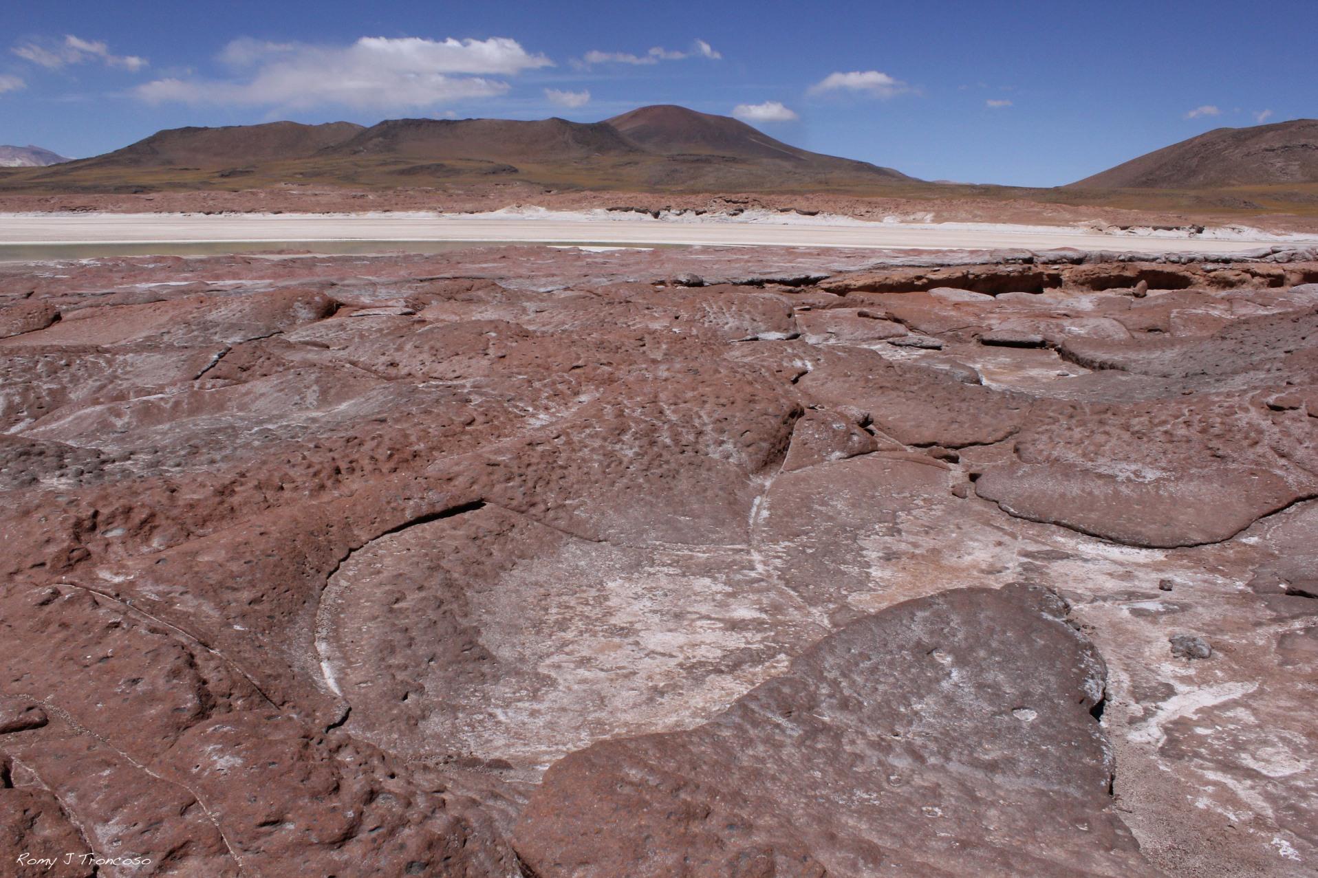 Piedras Rojas. Salar Aguas Calientes. 4500 metros. Foto por Romy J. Troncoso.
