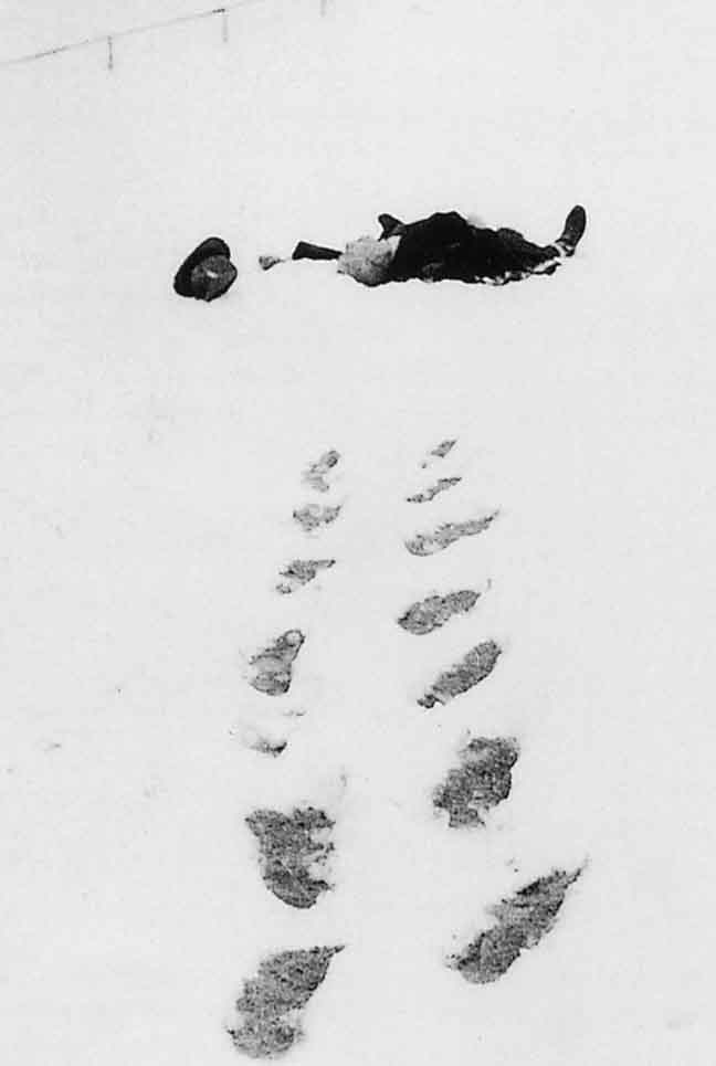 Walser-in-the-Snow